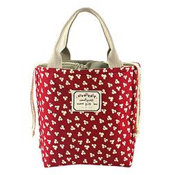 Bidear Cute Insulated Lunch Bag, Durable Canvas and Fashion
